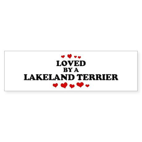 Loved: Lakeland Terrier Bumper Sticker