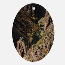 Black Canyon of the Gunnison Oval Ornament