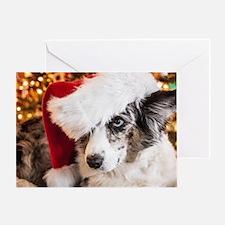 Cardigan Corgi Christmas Greeting Card