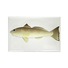 Southern Kingfish Rectangle Magnet