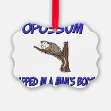 Opossum74147 Ornament