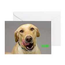 Yellow Lab Yum Birthday Card Greeting Card