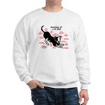 Pitbull Anatomy Sweatshirt