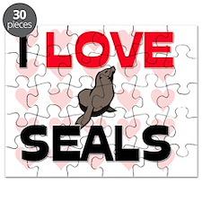 SEALS12175 Puzzle