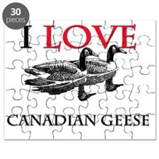 CANADIAN-GEESE7350 Puzzle