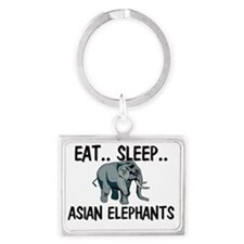 ASIAN-ELEPHANTS79226 Landscape Keychain