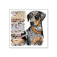 "Catahoula Square Sticker 3"" x 3"""