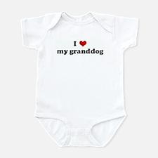 I Love my granddog Infant Bodysuit