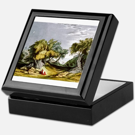 The garden of Gethsemane - 1846 Keepsake Box