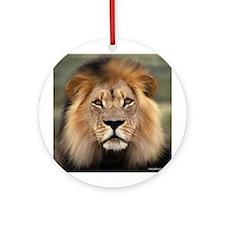Lion Photograph Ornament (Round)