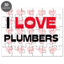 PLUMBERS100 Puzzle