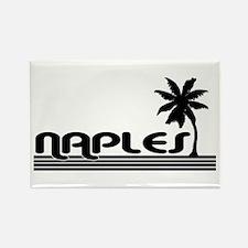 Naples, Florida Rectangle Magnet (10 pack)