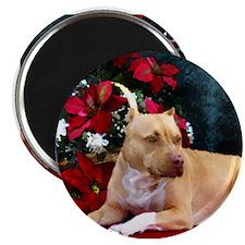 Pit Bull Terrier Christmas V Magnet