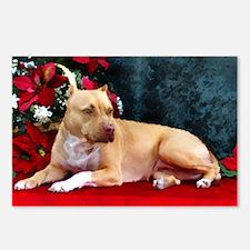 Pit Bull Terrier Christmas V Postcards (Package of