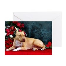 Pit Bull Terrier Christmas V Greeting Cards (Packa