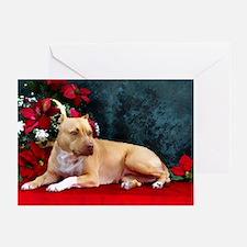 Pit Bull Terrier Christmas V Greeting Cards (Packa