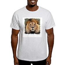 Lion Photograph Ash Grey T-Shirt