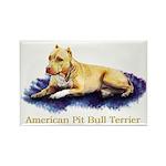 Pitbull Terrier Painting Violet Rectangle Magnet (