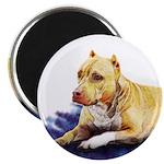 Pitbull Terrier Painting Violet Magnet