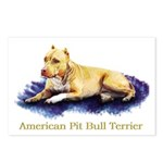 Pitbull Terrier Painting Violet Postcards (Package