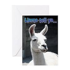 Happy Birthday - Funny Llama Greeting Card