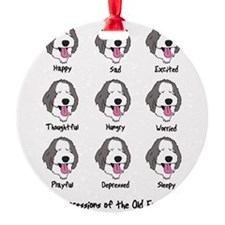 expressions_oes Ornament