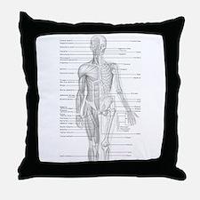 Human Anatomy Chart Throw Pillow