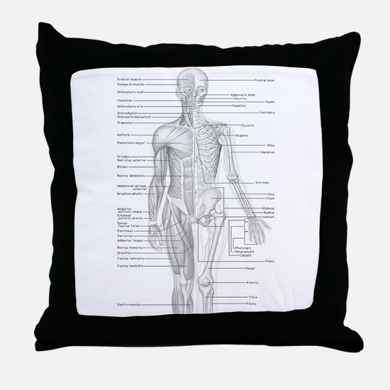Human Anatomy Chart Throw Pillow