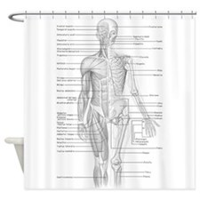 Human Anatomy Chart Shower Curtain