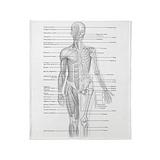 Anatomy Blankets