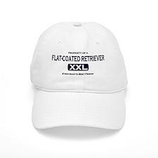 property_flatcoated Baseball Cap
