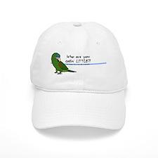 little_hahnsmacaw_bev Baseball Cap