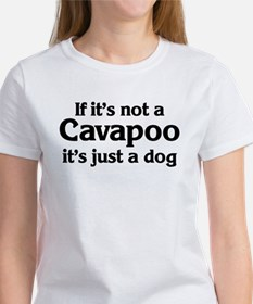 Cavapoo: If it's not Tee