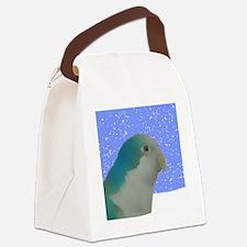 ornament_quakerpaintingblue Canvas Lunch Bag