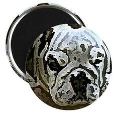 EBulldog Tile Box Magnet