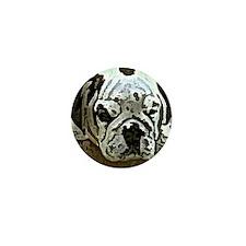 EBulldog Tile Box Mini Button