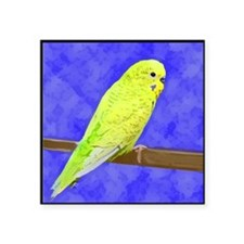 "budgie1_tile Square Sticker 3"" x 3"""