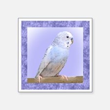 "budgie3_tile Square Sticker 3"" x 3"""