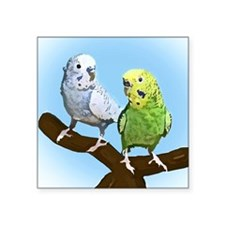 "budgies_tile Square Sticker 3"" x 3"""