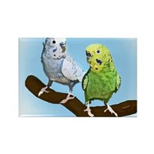 budgies_shirt Rectangle Magnet