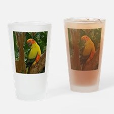 sunconure_forest_button Drinking Glass