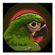 """severemacaw_asian_orname Square Car Magnet 3"""" x 3"""""""