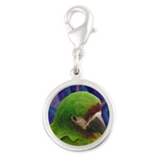 severemacaw_oilornament Silver Round Charm