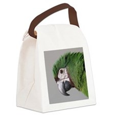 havocsayshi_ornament Canvas Lunch Bag