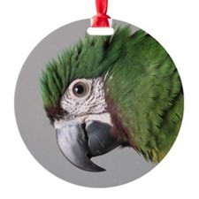 havocsayshi_ornament Ornament