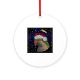 Parrots quaker Ornaments