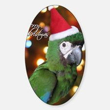 severemacaw_santa_card Decal
