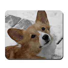 snowcorgi_card Mousepad