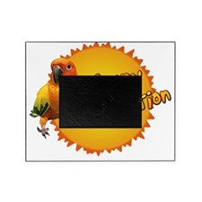 sunconure_sunnydisposition Picture Frame