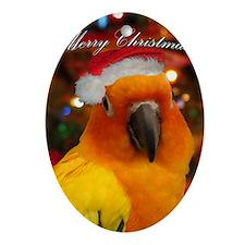 christmas_sunconure_cards Oval Ornament